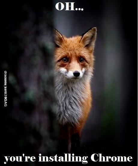 Sad Firefox is sad…